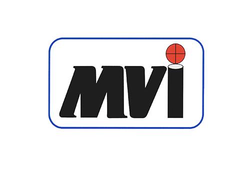 MicroVideo_Logo