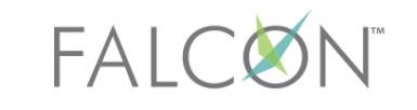 E&I Falcon Contract