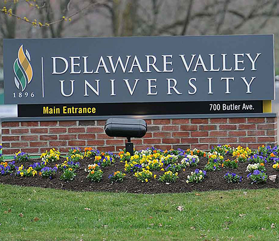 University Of Delaware Room And Board